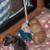 Boxerzwinger vom Asseblick - Bild